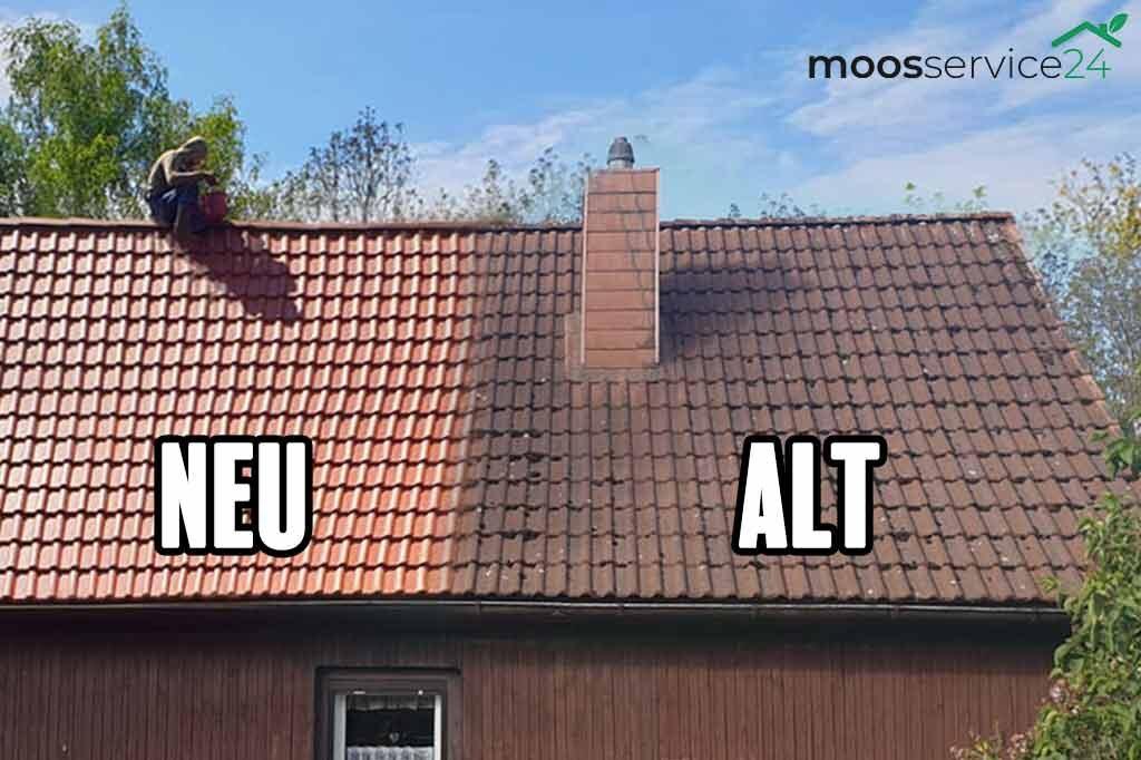Dach neu reinigen