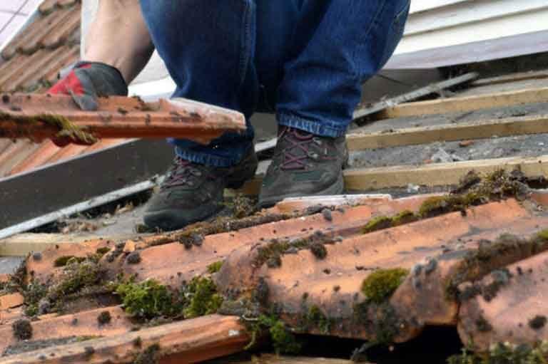 Dachsanierung oder Dachreinigung